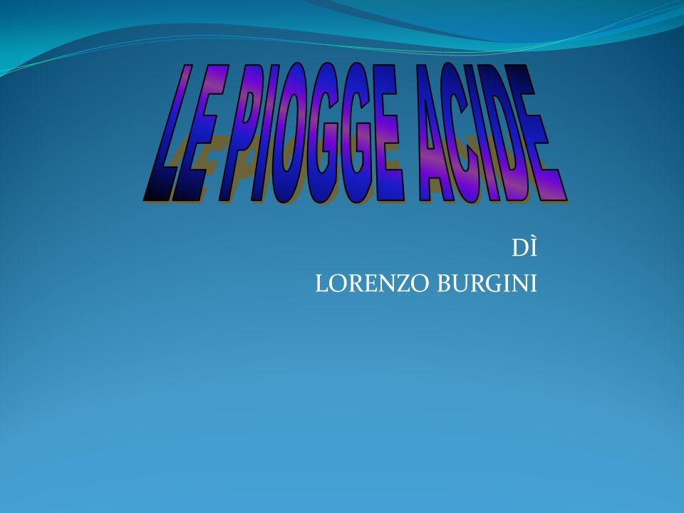 DÌ LORENZO BURGINI