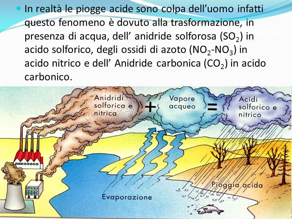 In realtà le piogge acide sono colpa delluomo infatti questo fenomeno è dovuto alla trasformazione, in presenza di acqua, dell anidride solforosa (SO 2 ) in acido solforico, degli ossidi di azoto (NO 2 -NO 3 ) in acido nitrico e dell Anidride carbonica (CO 2 ) in acido carbonico.