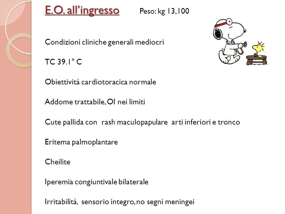 Praticato il23.07.11 GR x 10^6/ul4.20 Emoglobina g/dl11.6 MCV fl79 MCH27 MCHC34 Piastrine x 10^3/ul336 GB x 10^3/ul14.50 Neutrofili %69 Linfociti %22 VES I ora77 PCR mg/L201 PCT ng/ml4.1 Esami ematochimici: Praticato il23.07.11 Sodio mEq/l129 Potassio mEq/l3.7 AST UI/L 21 ALT UI/L 39 gGT U/L36 Prot.