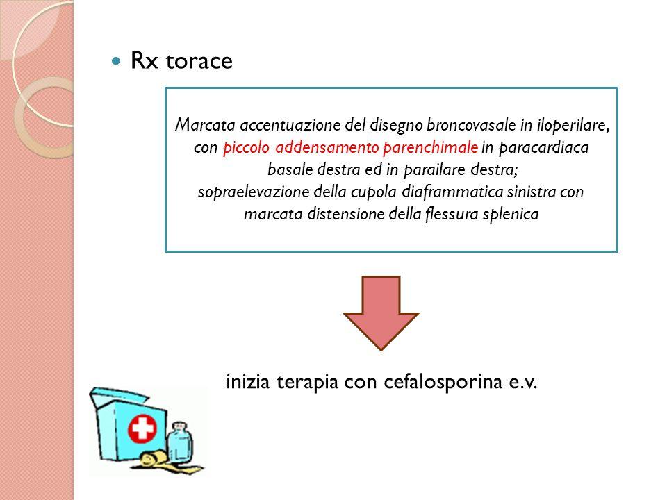 Ig totali TORCH, EBV, Vidal Wright, Ig Mycoplasma e Chlamydia p.