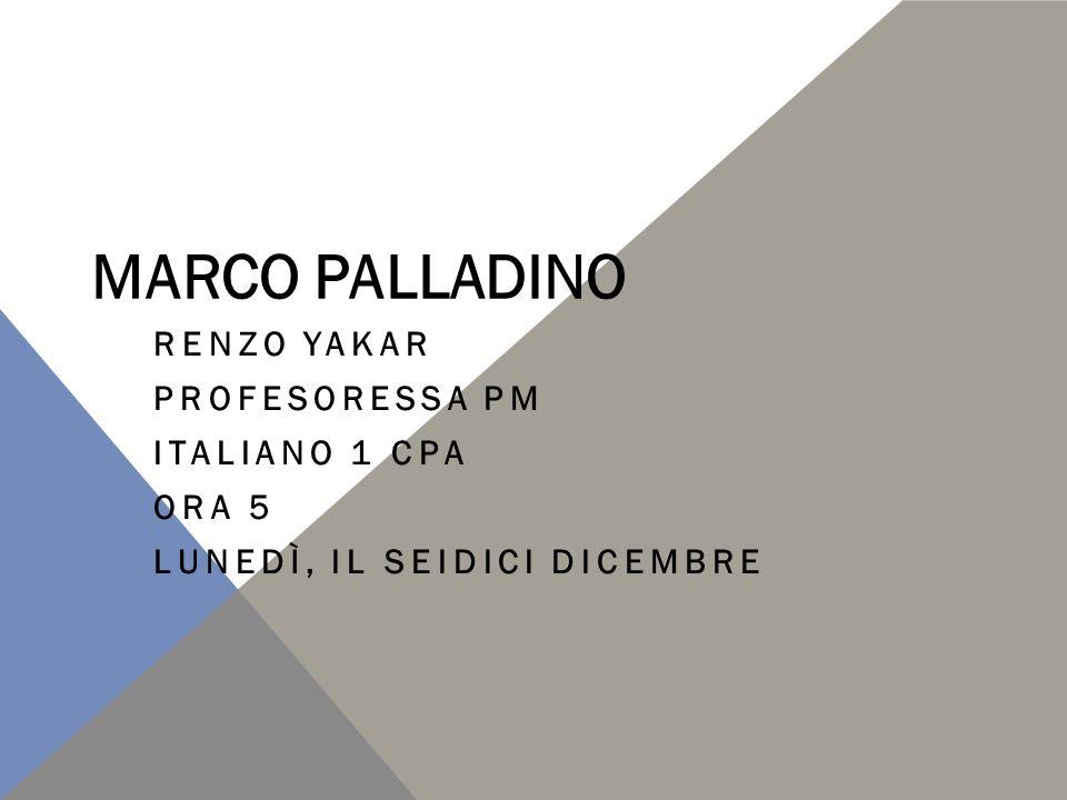 Lei è Marco Palladino. Ha 25 anni.