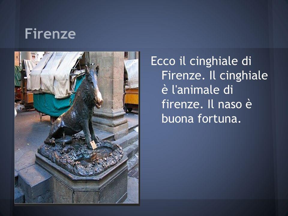 Firenze Ecco il cinghiale di Firenze. Il cinghiale è l animale di firenze. Il naso è buona fortuna.