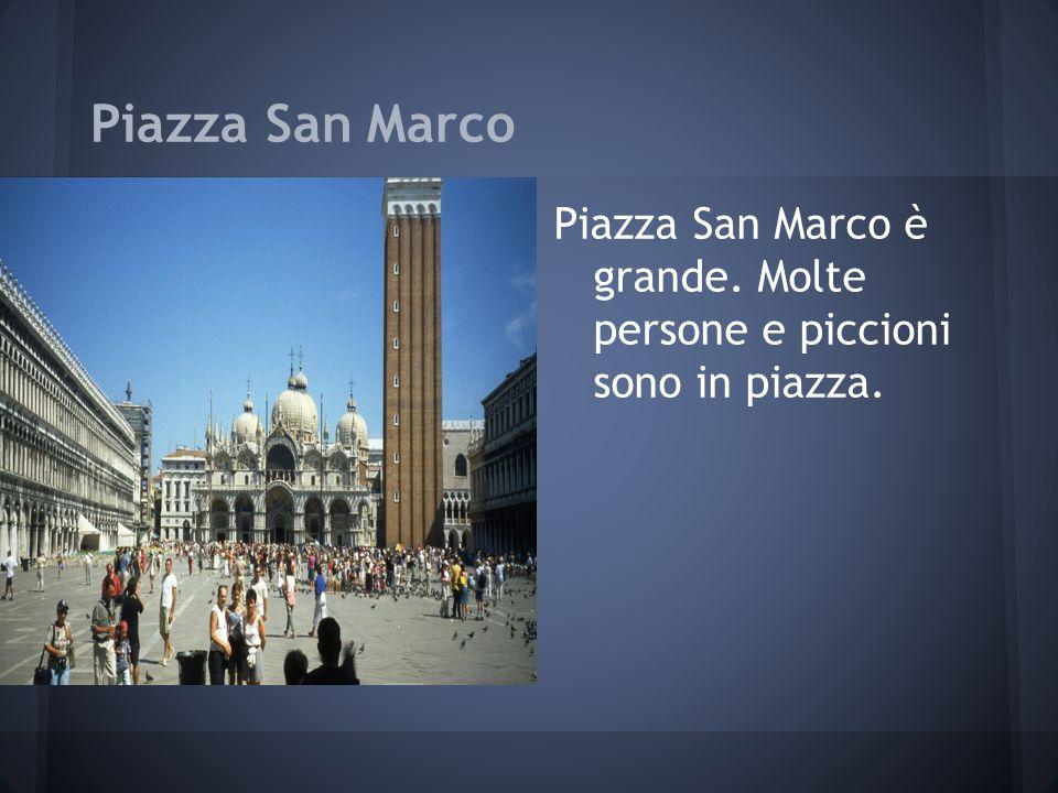 Piazza San Marco Piazza San Marco è grande. Molte persone e piccioni sono in piazza.