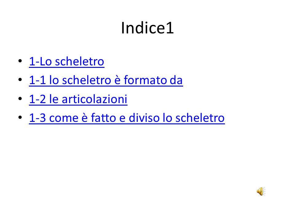 Indice1 1-Lo scheletro 1-1 lo scheletro è formato da 1-2 le articolazioni 1-3 come è fatto e diviso lo scheletro