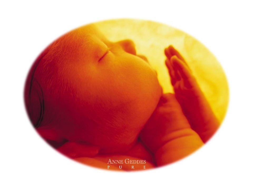 PROLATTINA Entra in circolo DOPO la poppata per produrre il latte della poppataSUCCESSIVA WHO/CDR/93.6 3/2 Prolattina in circolo Bambino che succhia Impulsi sensoriali dal capezzolo O La prolattina è secreta in maggior quantità durante la notte O Sopprime lovulazione