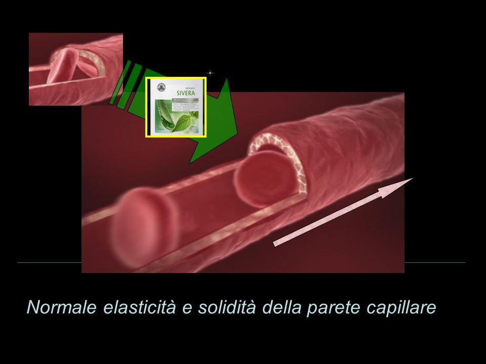 Normale elasticità e solidità della parete capillare