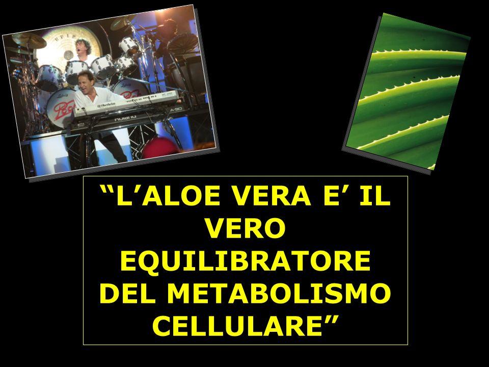 LALOE VERA E IL VERO EQUILIBRATORE DEL METABOLISMO CELLULARE