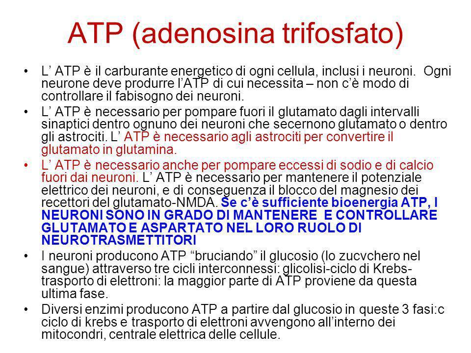 Supportare i mitocondri e la produzione di ATP I vari asemblaggi di enzimi richiedono vitamine:B1, B2, B3 (NADH), B5, biotina, e acido alfa lipoico come coenzima Il magnesio è necessario sia per la glicolisi che per il ciclo di Krebs oltre che come minerale.