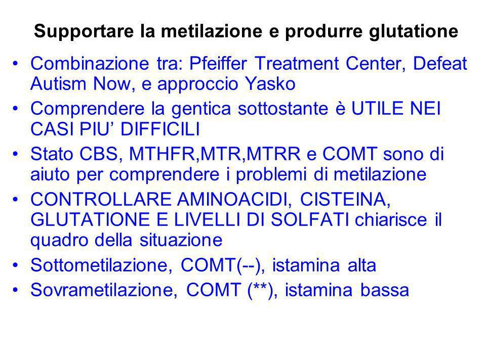 Tipo COMT (- -): approcci di trattamento DAN Methl B12 TMG DMG P5P Acido folinico Creatine L-Carnitina Glutatione(GSH) Yasko B12 intrinseca Nucleotidi Metilfolati BH4 GSH(limitato) Si dà enfasi a: Donatori di gruppi metilici: Metil B12 SAMe Quercetina Gingko Curcumina Tè verde Fofatidilserina Pfeiffer Metionina/SAMe Metil B12 Calcio Magnesio P5P/B6 Zinco Vitamina C fosfatidilserina evitare: Folati DMAE Ciano B12 Niacinamide