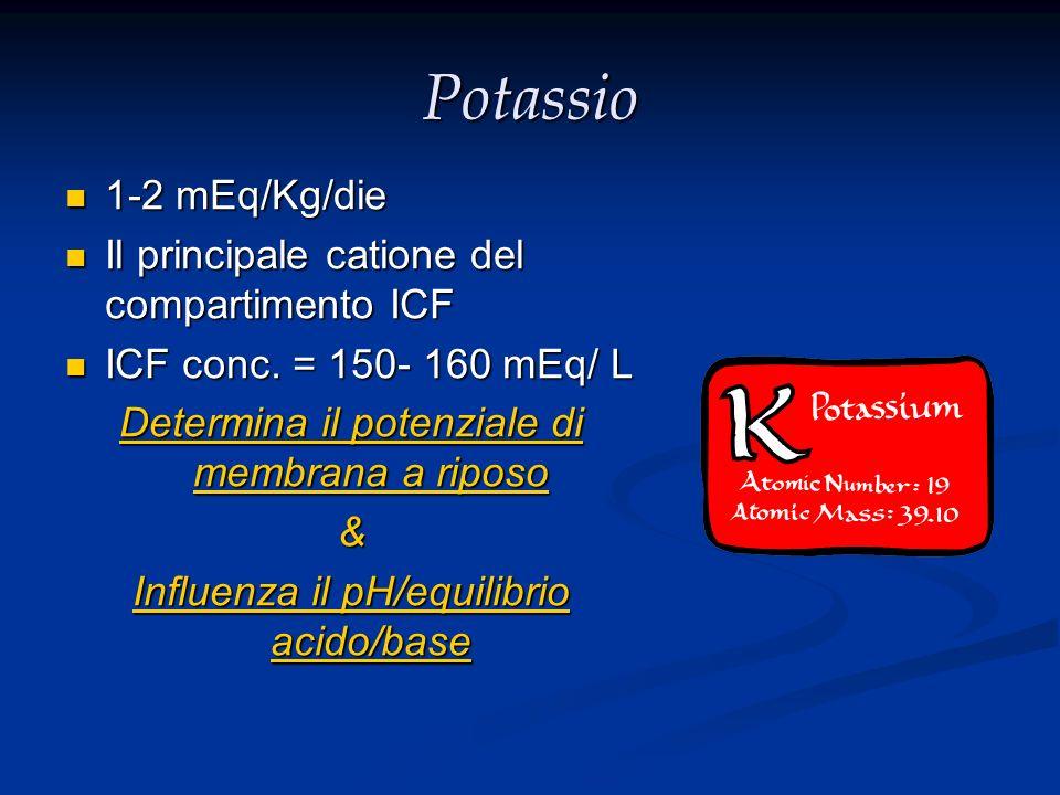 Potassio 1-2 mEq/Kg/die 1-2 mEq/Kg/die Il principale catione del compartimento ICF Il principale catione del compartimento ICF ICF conc. = 150- 160 mE