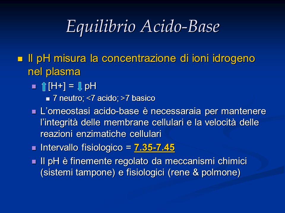 Equilibrio Acido-Base Il pH misura la concentrazione di ioni idrogeno nel plasma Il pH misura la concentrazione di ioni idrogeno nel plasma [H+] = pH