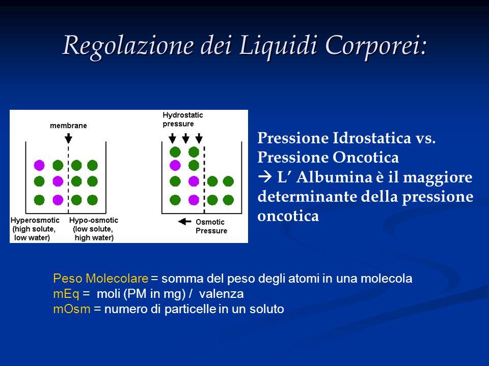 Trattamento Ipocalcemia Ipocalcemia Acuta (laringospaspasmo,tetania,convulsioni:EMERGENZA) - 1 fl Gluconato di calcio in 10 min Cronica - Dieta ricca calcio (1-2 gr/die) - Carbonato di calcio per os 1-3gr/die +/- Calcitriolo (Rocaltrol) 0.25-0.50/die Ipocalcemia da ipoalbuminemia non necessita trattamento.