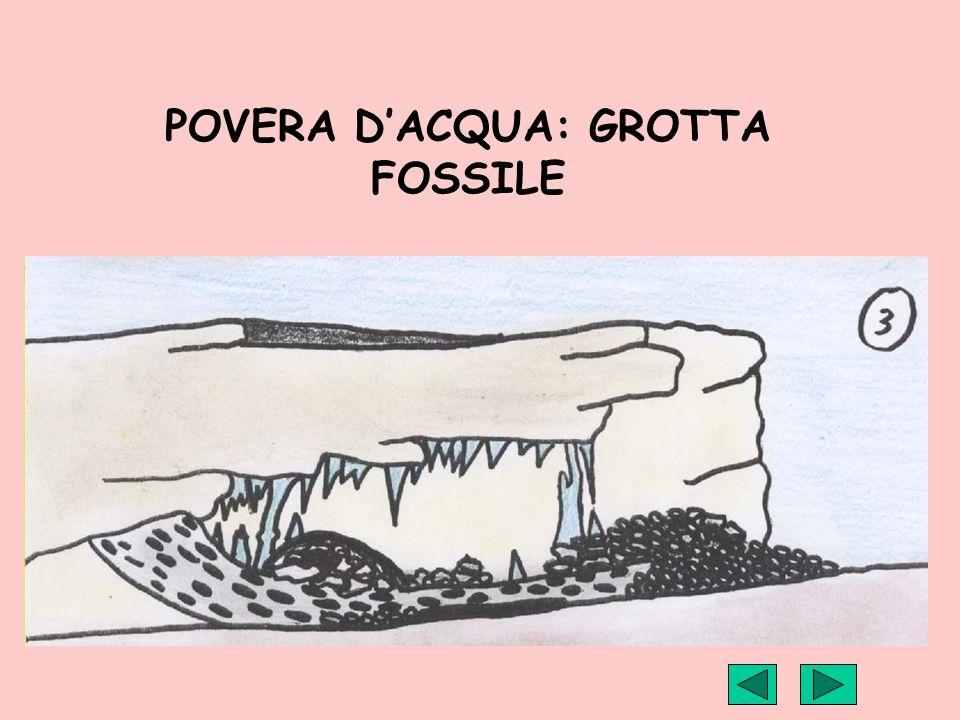 POVERA DACQUA: GROTTA FOSSILE
