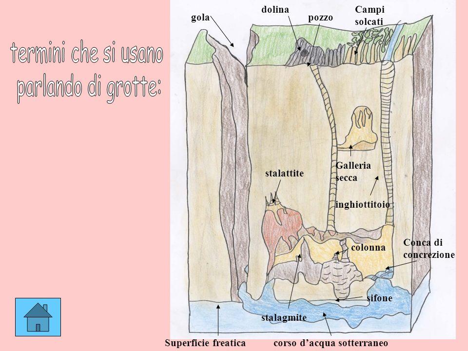 gola dolina pozzo Campi solcati stalattite Galleria secca inghiottitoio colonna Conca di concrezione Superficie freatica sifone stalagmite corso dacqu