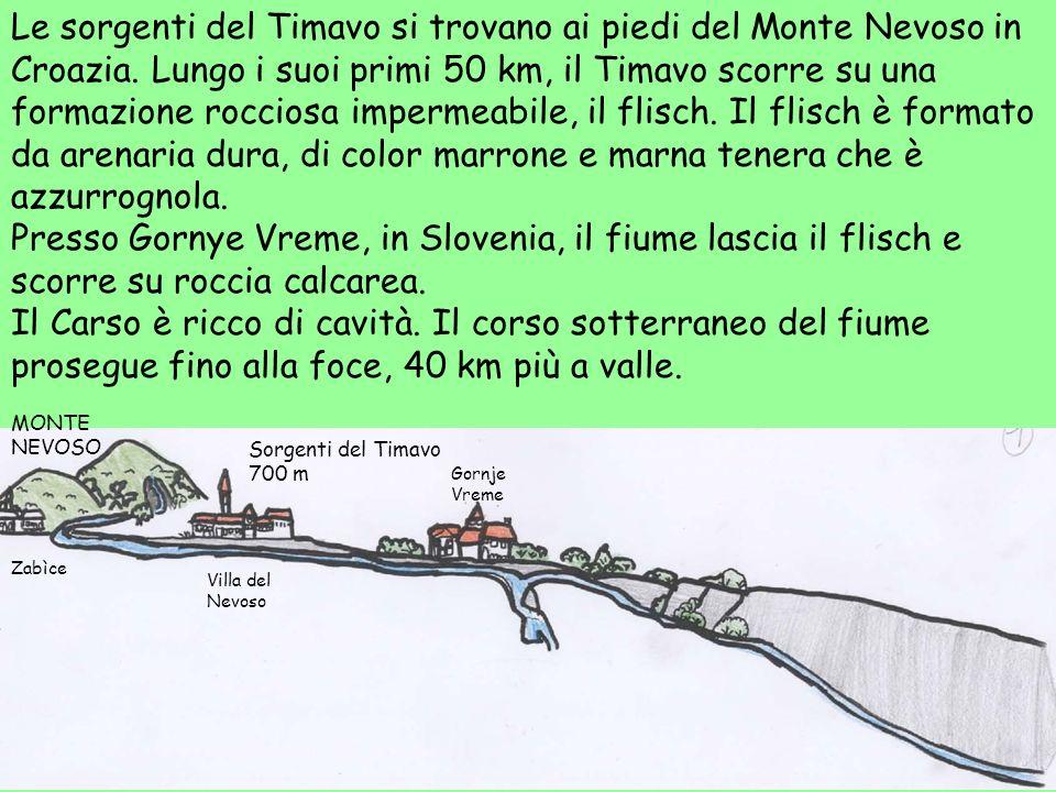 Le sorgenti del Timavo si trovano ai piedi del Monte Nevoso in Croazia. Lungo i suoi primi 50 km, il Timavo scorre su una formazione rocciosa impermea