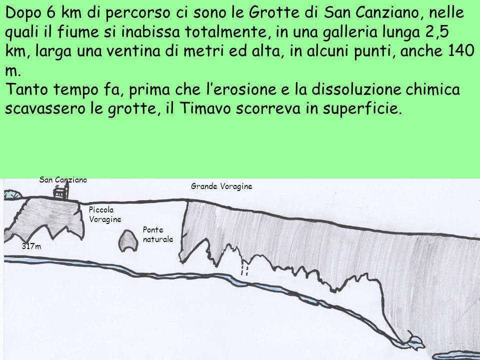 Dopo 6 km di percorso ci sono le Grotte di San Canziano, nelle quali il fiume si inabissa totalmente, in una galleria lunga 2,5 km, larga una ventina