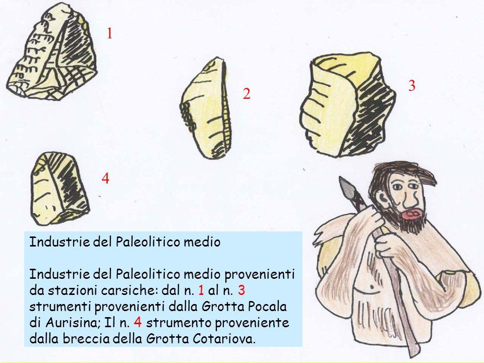 Industrie del Paleolitico medio Industrie del Paleolitico medio provenienti da stazioni carsiche: dal n. 1 al n. 3 strumenti provenienti dalla Grotta