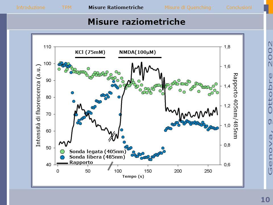 Misure raziometriche Sonda legata (405nm) Sonda libera (485nm) Rapporto NMDA(100M) KCl (75mM) Intensità di fluorescenza (a.u.) Rapporto 405nm/485nm Te