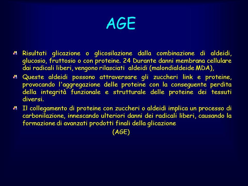 AGE Risultati glicazione o glicosilazione dalla combinazione di aldeidi, glucosio, fruttosio o con proteine. 24 Durante danni membrana cellulare dai r