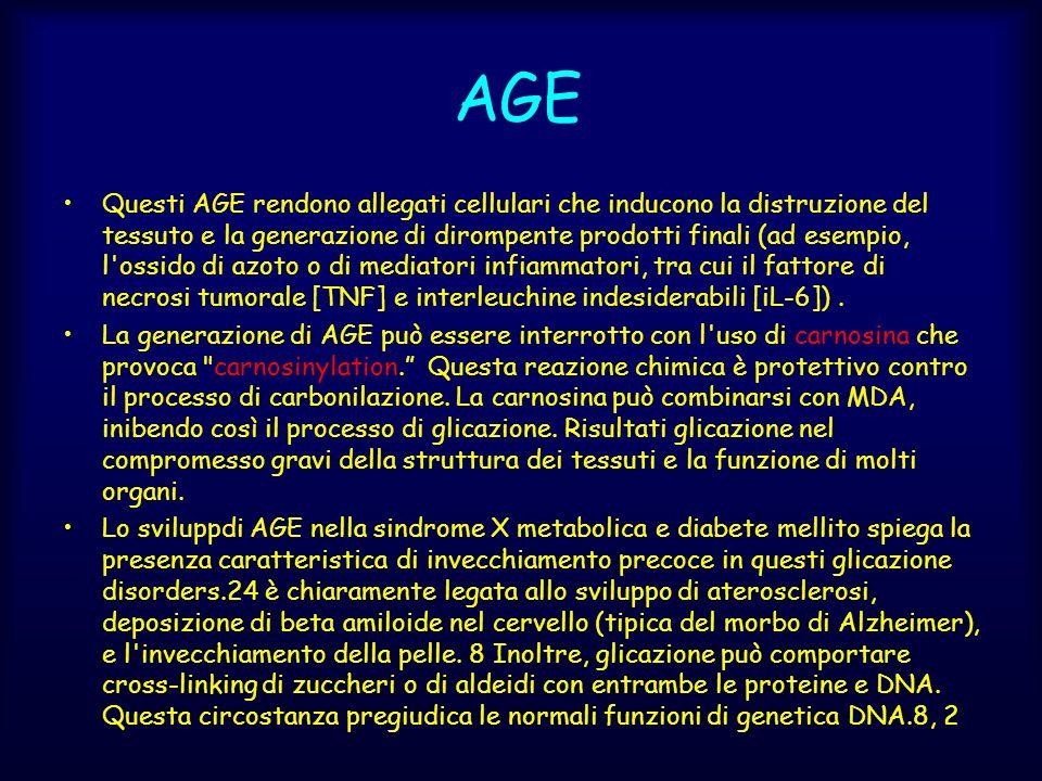 Questi AGE rendono allegati cellulari che inducono la distruzione del tessuto e la generazione di dirompente prodotti finali (ad esempio, l'ossido di