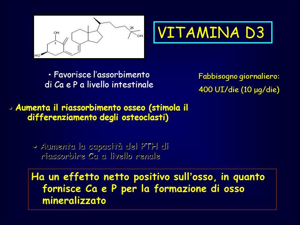 VITAMINA D3 Ha un effetto netto positivo sullosso, in quanto fornisce Ca e P per la formazione di osso mineralizzato Favorisce lassorbimento di Ca e P