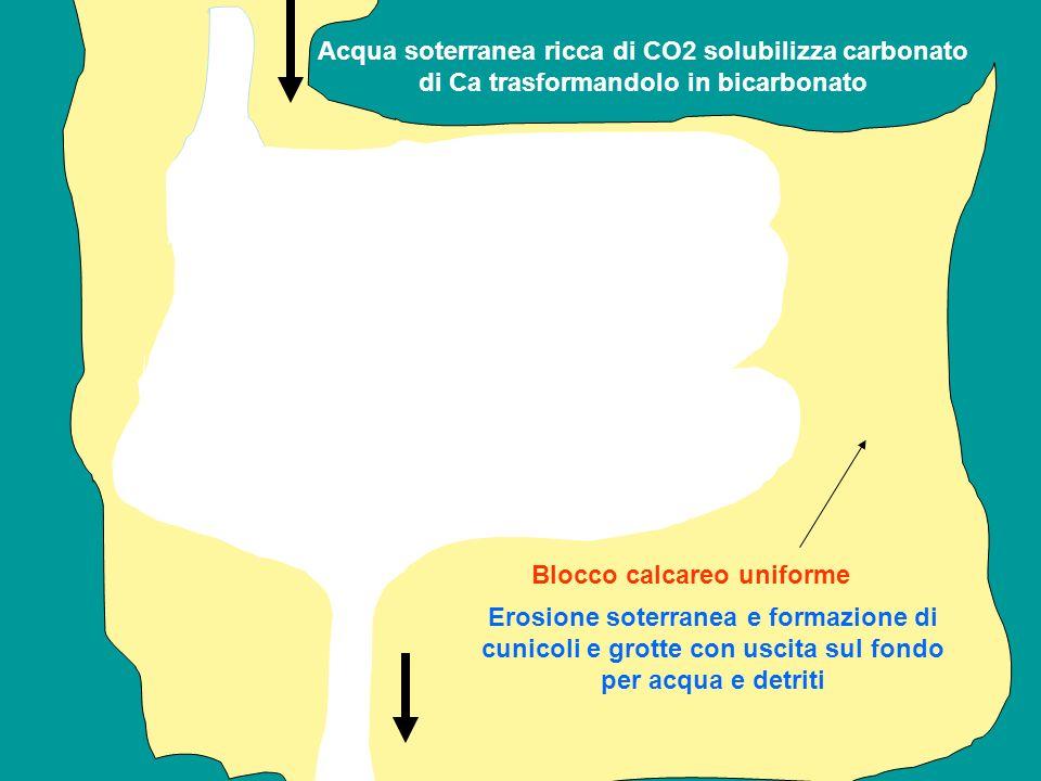 Acqua soterranea ricca di CO2 solubilizza carbonato di Ca trasformandolo in bicarbonato Erosione soterranea e formazione di cunicoli e grotte con usci