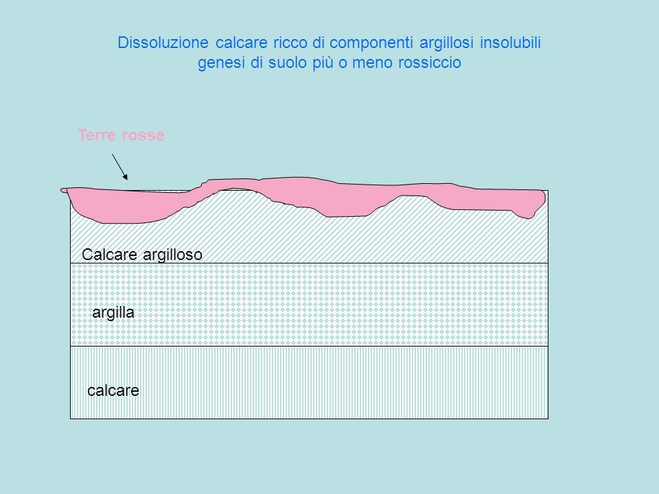 Dissoluzione calcare ricco di componenti argillosi insolubili genesi di suolo più o meno rossiccio calcare argilla Calcare argilloso Terre rosse
