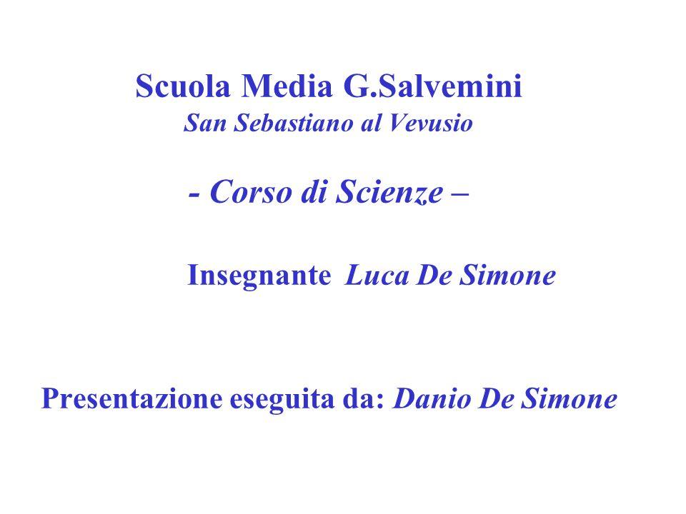 Scuola Media G.Salvemini San Sebastiano al Vevusio - Corso di Scienze – Insegnante Luca De Simone Presentazione eseguita da: Danio De Simone
