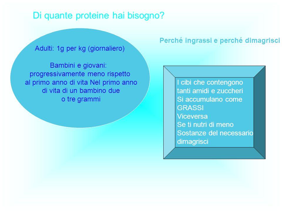 Di quante proteine hai bisogno? Adulti: 1g per kg (giornaliero) Bambini e giovani: progressivamente meno rispetto al primo anno di vita Nel primo anno