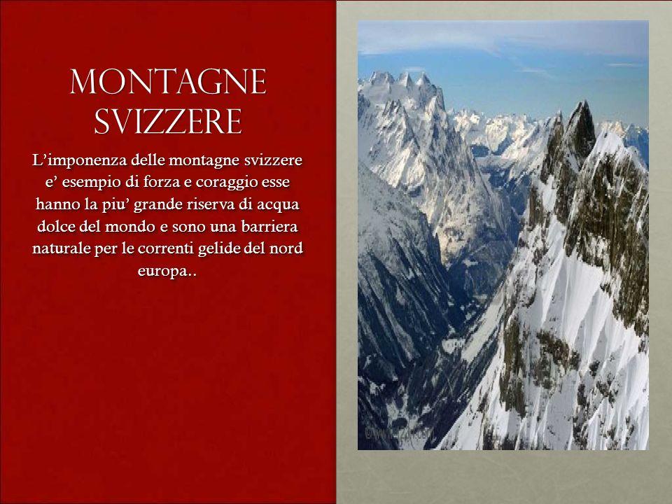 Montagne svizzere Limponenza delle montagne svizzere e esempio di forza e coraggio esse hanno la piu grande riserva di acqua dolce del mondo e sono un