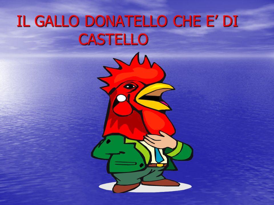 IL GALLO DONATELLO CHE E DI CASTELLO