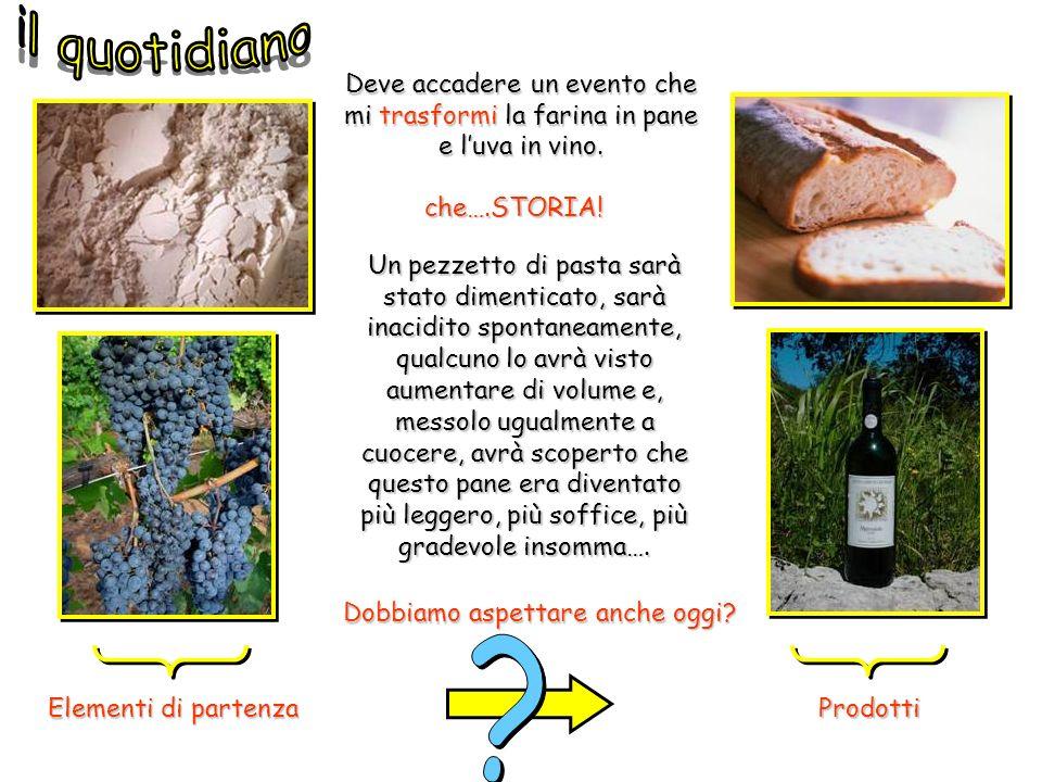 Elementi di partenza Prodotti Deve accadere un evento che mi trasformi la farina in pane e luva in vino. Un pezzetto di pasta sarà stato dimenticato,