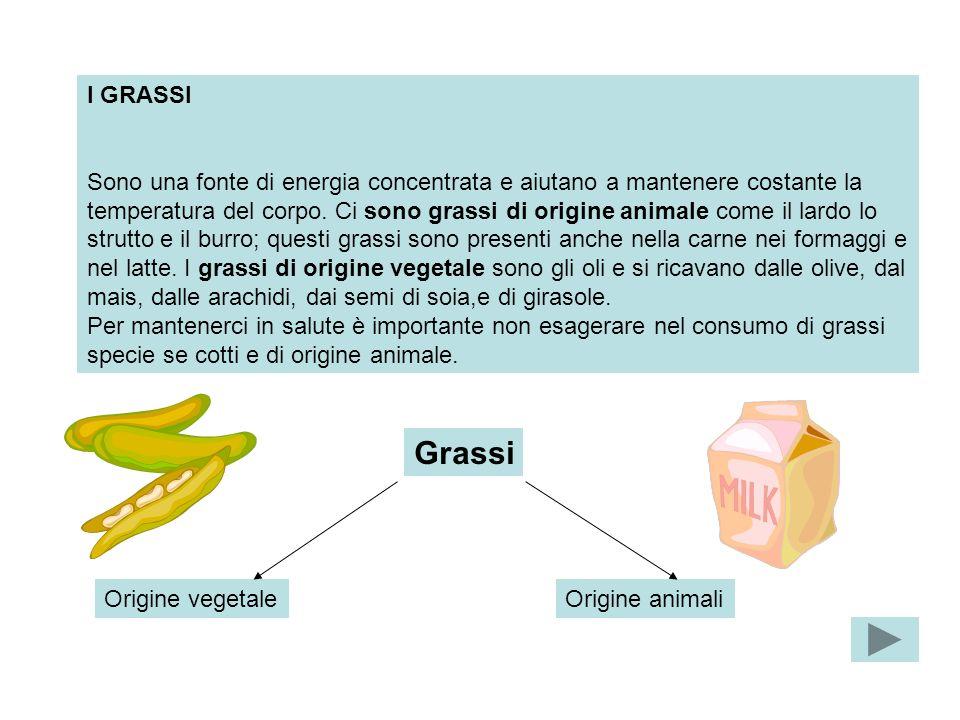 I GRASSI Sono una fonte di energia concentrata e aiutano a mantenere costante la temperatura del corpo. Ci sono grassi di origine animale come il lard