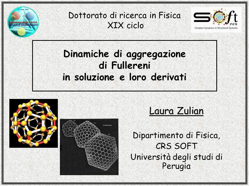 Dinamiche di aggregazione di Fullereni in soluzione e loro derivati Laura Zulian Dipartimento di Fisica, CRS SOFT Università degli studi di Perugia Dottorato di ricerca in Fisica XIX ciclo