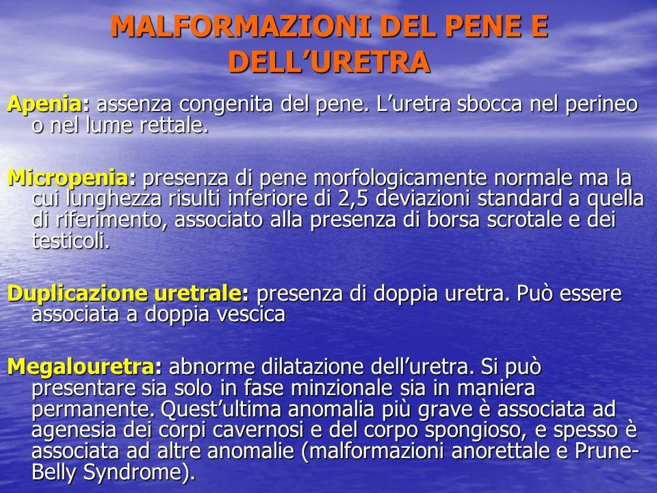 Apenia: assenza congenita del pene. Luretra sbocca nel perineo o nel lume rettale. Micropenia: presenza di pene morfologicamente normale ma la cui lun