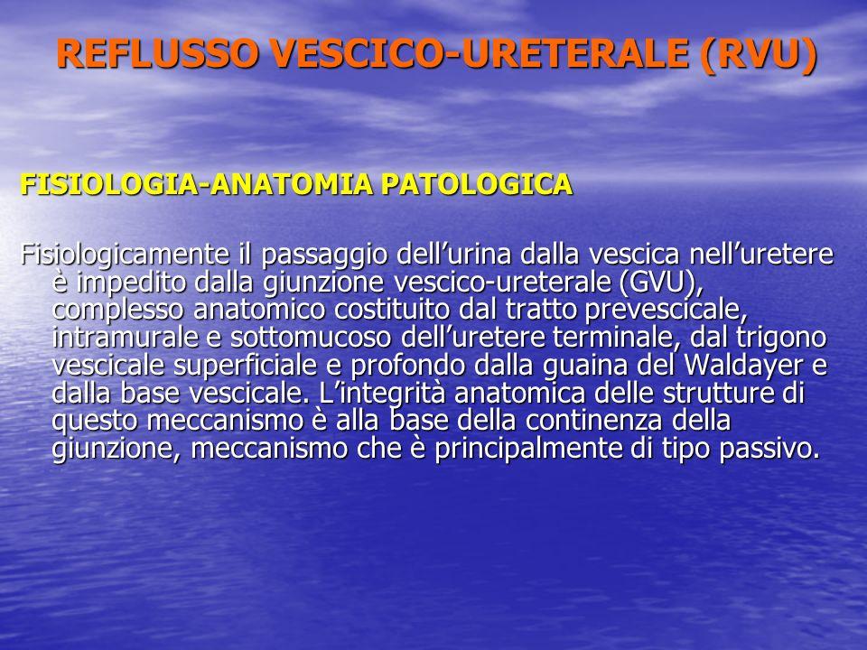 FISIOLOGIA-ANATOMIA PATOLOGICA Fisiologicamente il passaggio dellurina dalla vescica nelluretere è impedito dalla giunzione vescico-ureterale (GVU), c