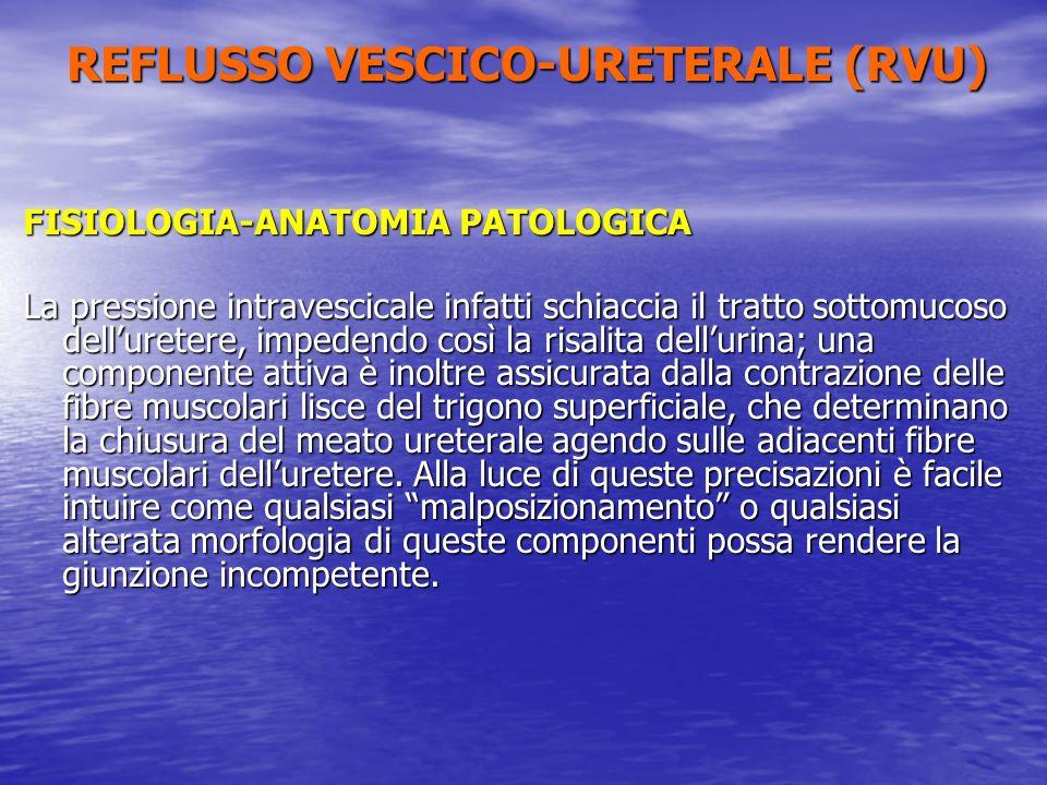 FISIOLOGIA-ANATOMIA PATOLOGICA La pressione intravescicale infatti schiaccia il tratto sottomucoso delluretere, impedendo così la risalita dellurina;
