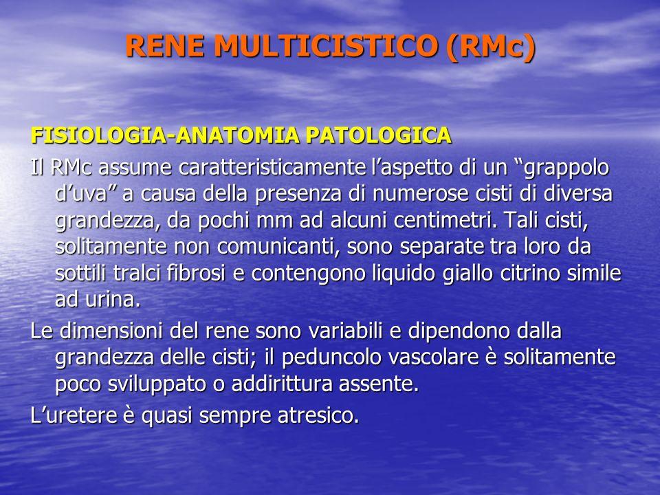 FISIOLOGIA-ANATOMIA PATOLOGICA Il RMc assume caratteristicamente laspetto di un grappolo duva a causa della presenza di numerose cisti di diversa gran