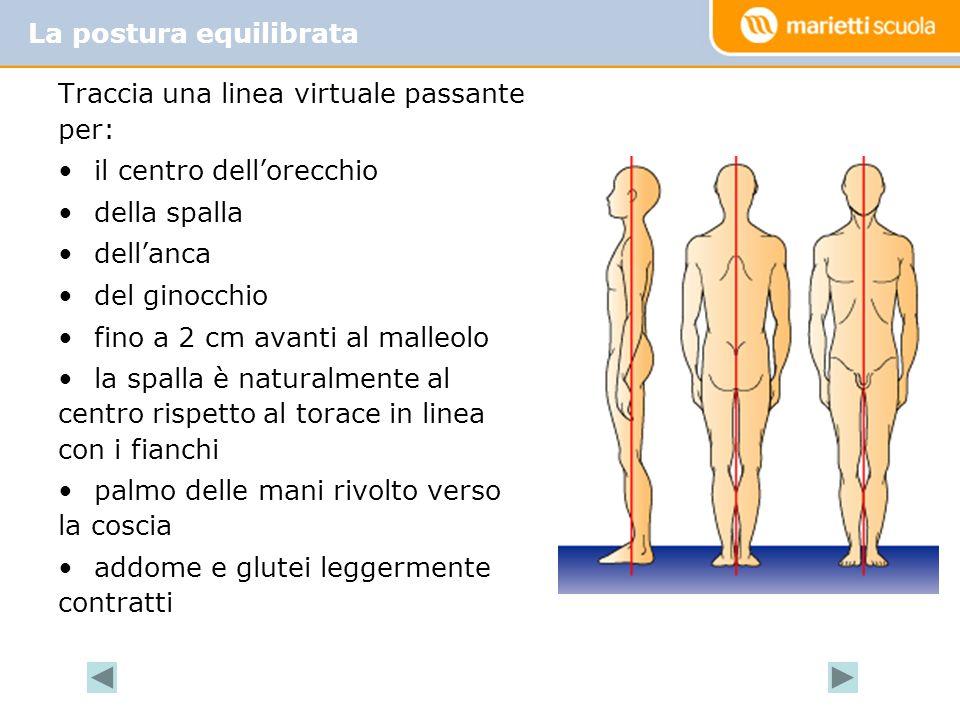 Traccia una linea virtuale passante per: il centro dellorecchio della spalla dellanca del ginocchio fino a 2 cm avanti al malleolo la spalla è natural
