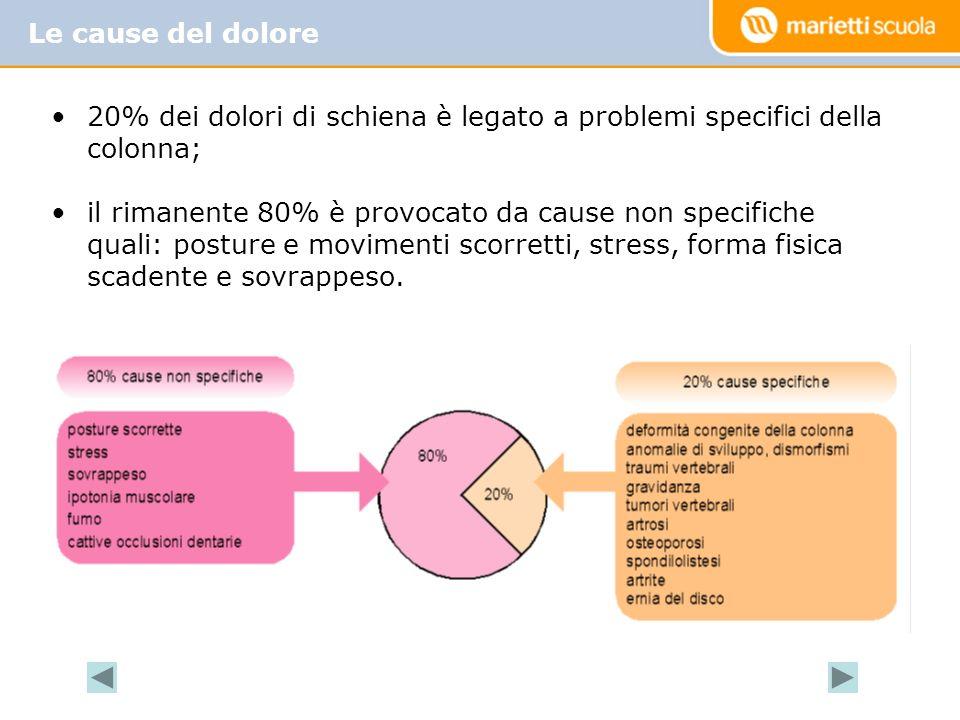 20% dei dolori di schiena è legato a problemi specifici della colonna; il rimanente 80% è provocato da cause non specifiche quali: posture e movimenti