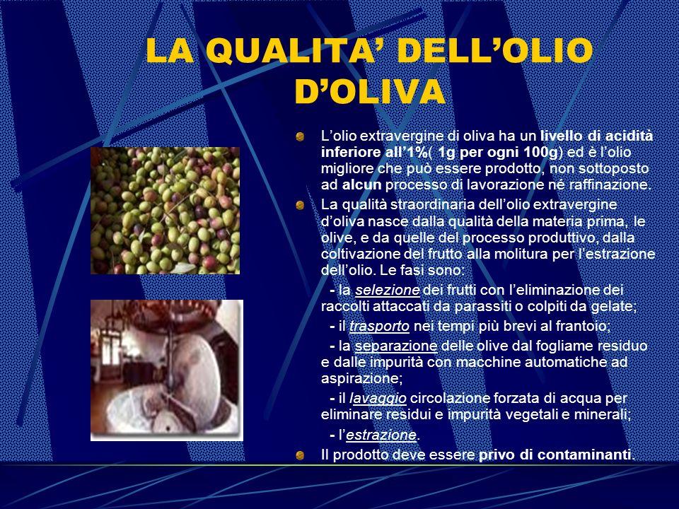 LOLIVO Lolivo esiste in numerose varietà, con oltre 700 tipi locali, chiamatiCultivar, diffusi nella fascia del Globo a clima temperato che corrisponde alle sue esigenze in fatto di temperatura massima e minima: non a caso lItalia rimane il maggior produttore di olio doliva di qualità.
