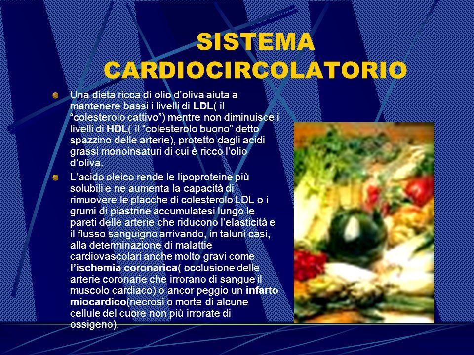SISTEMA CARDIOCIRCOLATORIO Una dieta ricca di olio doliva aiuta a mantenere bassi i livelli di LDL( il colesterolo cattivo) mentre non diminuisce i livelli di HDL( il colesterolo buono detto spazzino delle arterie), protetto dagli acidi grassi monoinsaturi di cui è ricco lolio doliva.