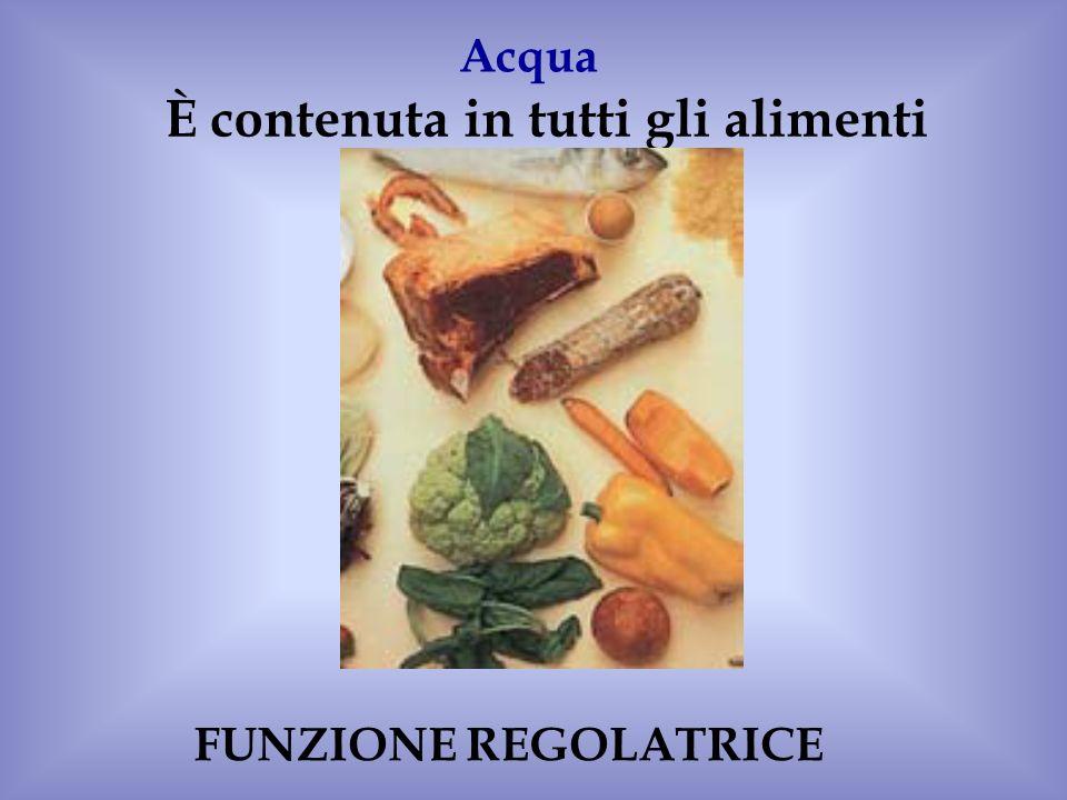 È contenuta in tutti gli alimenti Acqua FUNZIONE REGOLATRICE