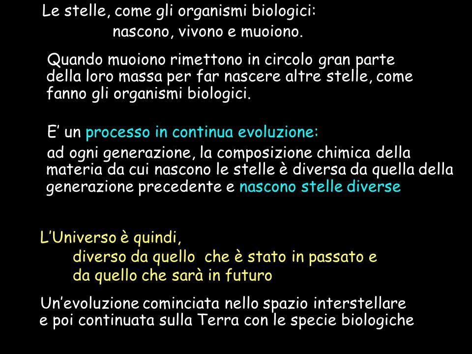Le stelle, come gli organismi biologici: nascono, vivono e muoiono.