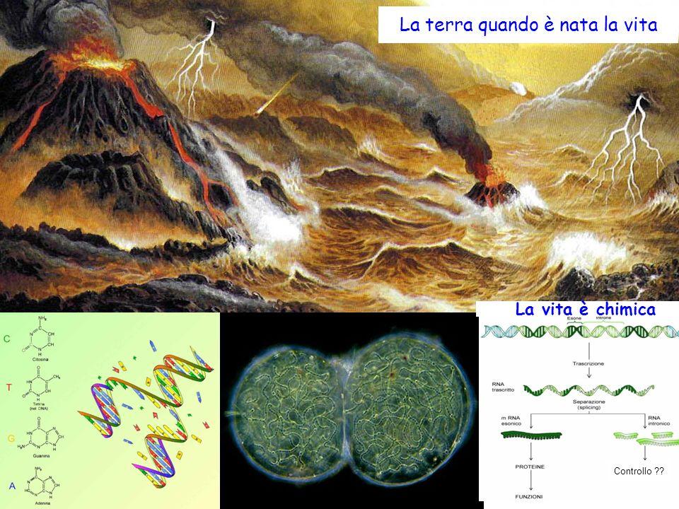 La terra primordiale La terra quando è nata la vita Controllo ?? La vita è chimica