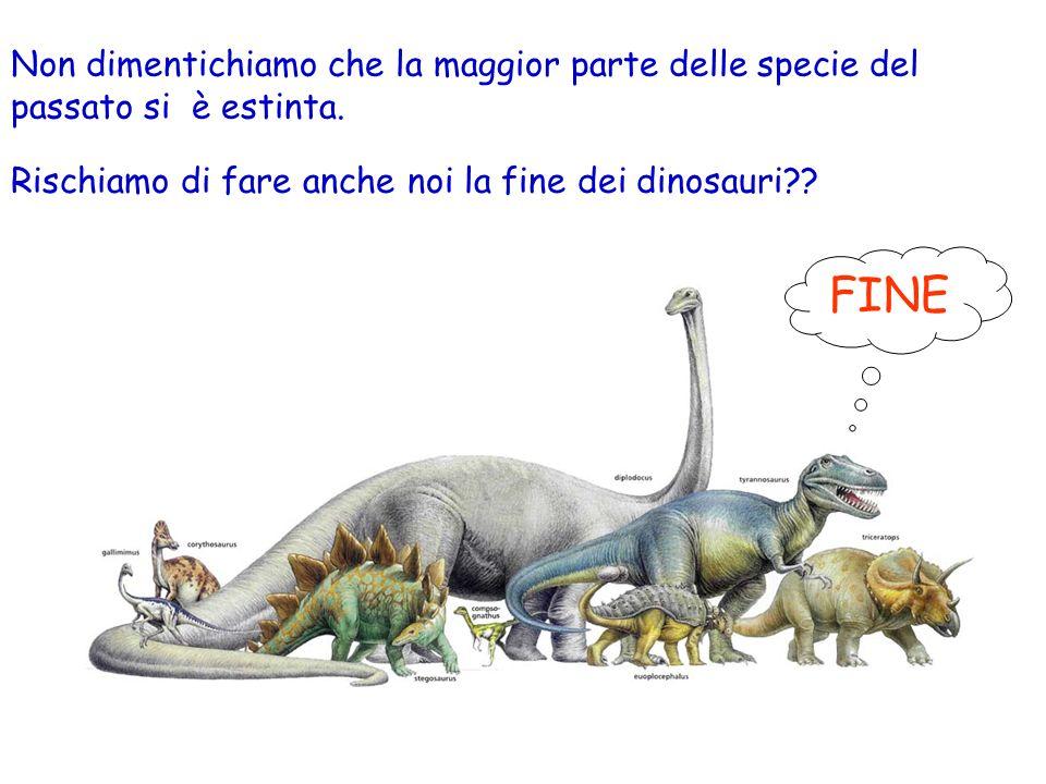 Rischiamo di fare anche noi la fine dei dinosauri?.