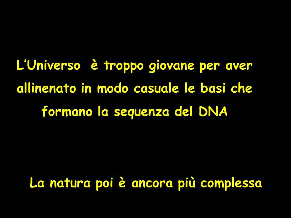 LUniverso è troppo giovane per aver allinenato in modo casuale le basi che formano la sequenza del DNA La natura poi è ancora più complessa