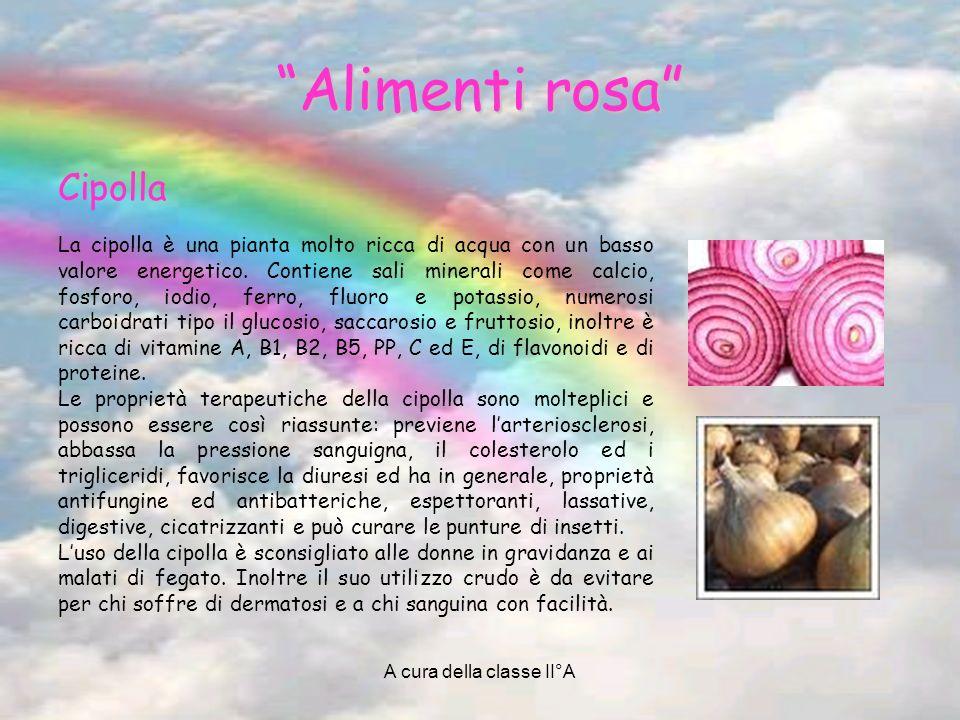 A cura della classe II°A Alimenti rosa Cipolla La cipolla è una pianta molto ricca di acqua con un basso valore energetico. Contiene sali minerali com