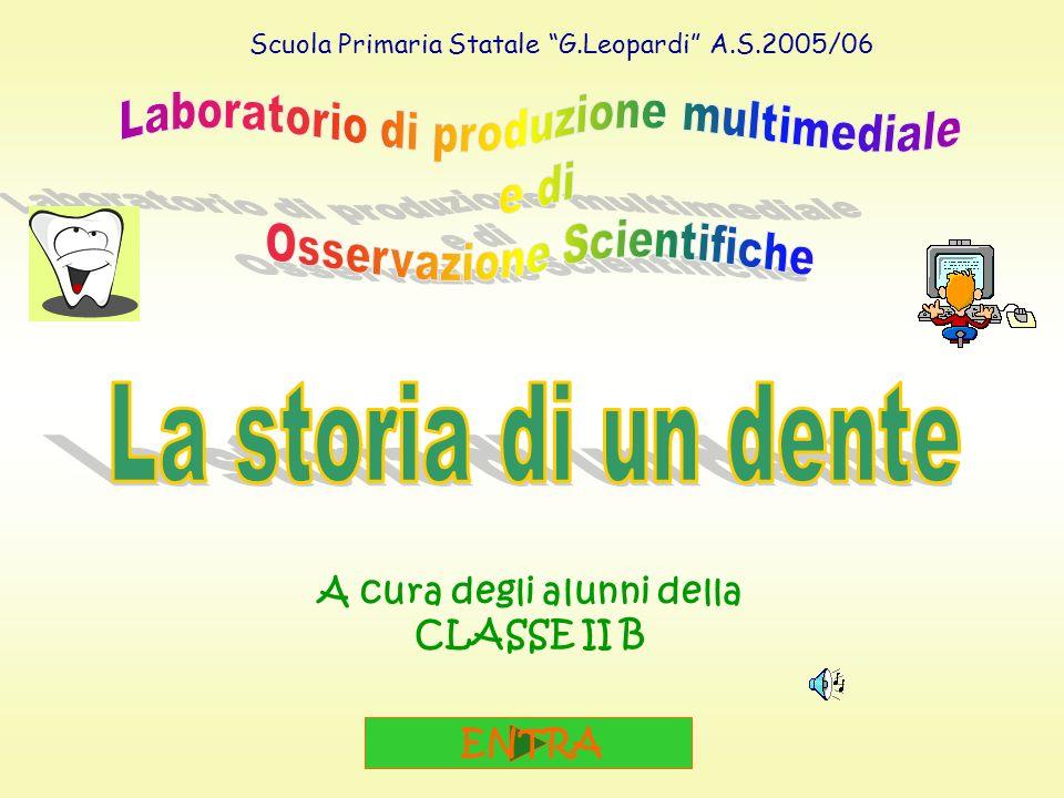 I laboratori di informatica e osservazioni scientifiche sono stati svolti in sinergia dalle insegnanti ADABBO M.