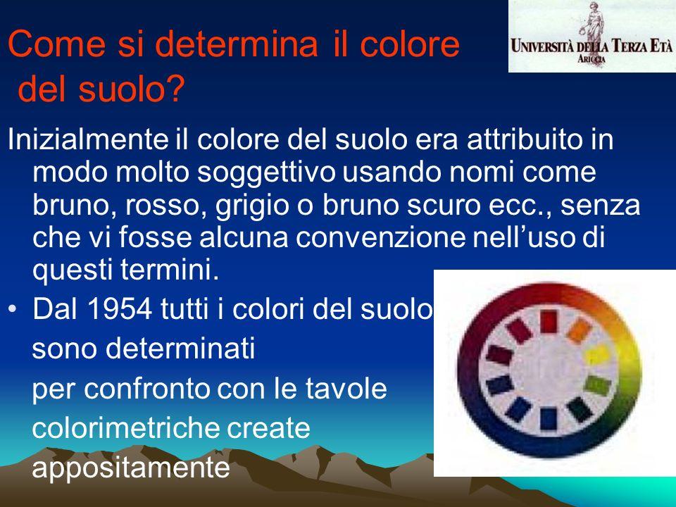 Inizialmente il colore del suolo era attribuito in modo molto soggettivo usando nomi come bruno, rosso, grigio o bruno scuro ecc., senza che vi fosse